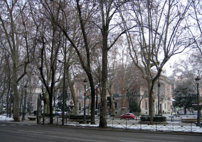 El Prado, Madrid