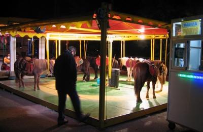 live shetland pony carousel