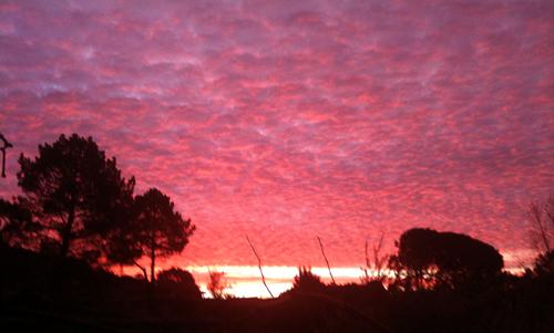 sunrise 21/01/10