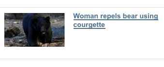 Headline - Woman repels bear using courgette