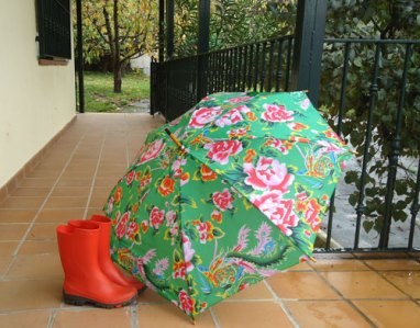 red wellingtons & floral umbrella