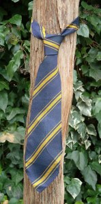 School tie knotted round vine trunk