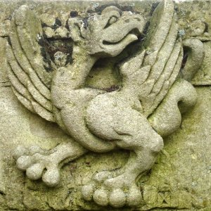 wyvern (relief carving)