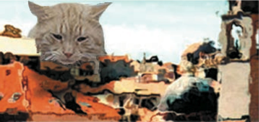 Cat apocalypse collage