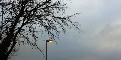 street lamp and winter tree