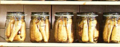 Bottled parsnips  on the IKEA catalogue cover