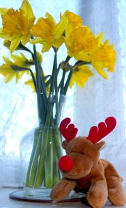 reindeer plush and daffodils