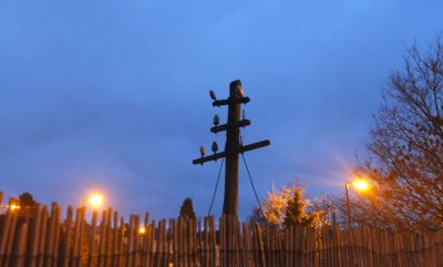 Telegraph pole silhouetted against sky at daybreak