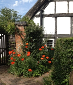 Thatched-roofed, timbered cottage with poppies at the gate