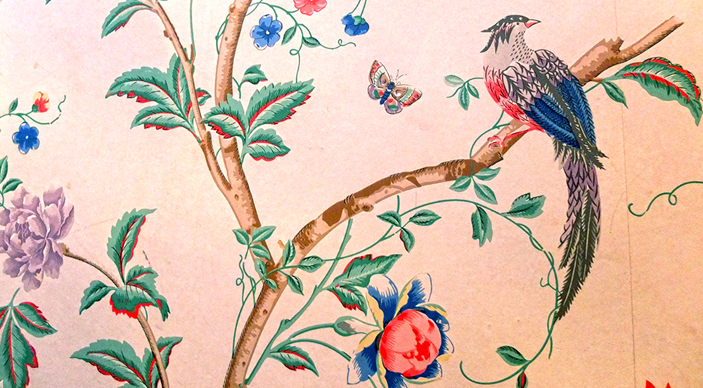 exotic bird wallpaper detail