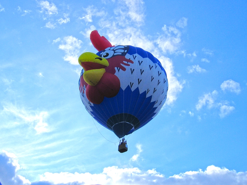 rooster hot air balloon