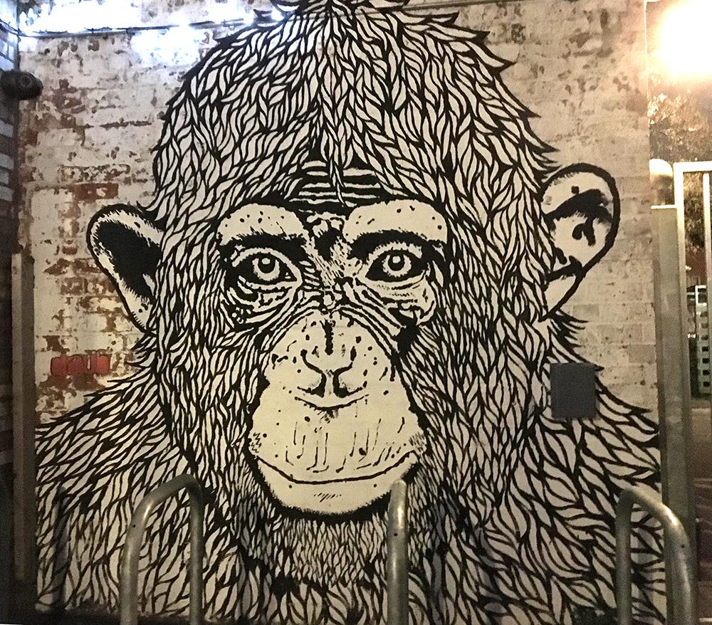 chimpanzee face mural