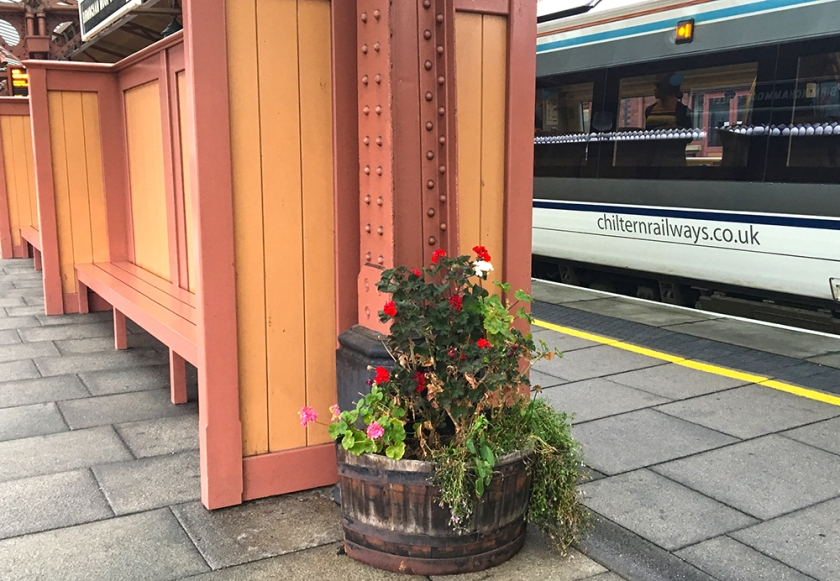 Tub of flowers on station platform