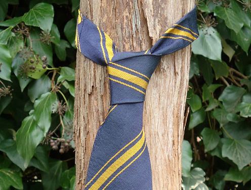 school tie tied round vine trunk