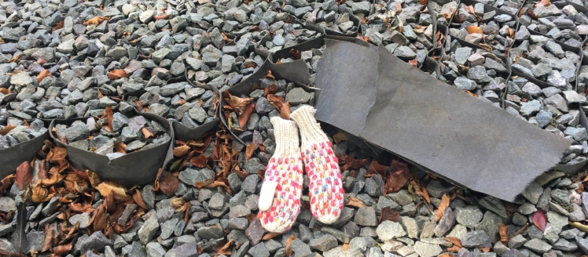 abandoned mittens