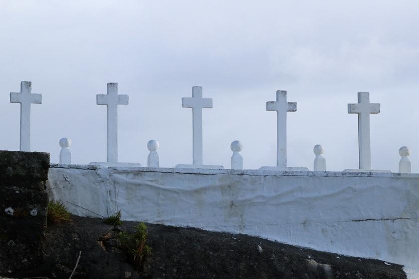 row of white cemetery crosses