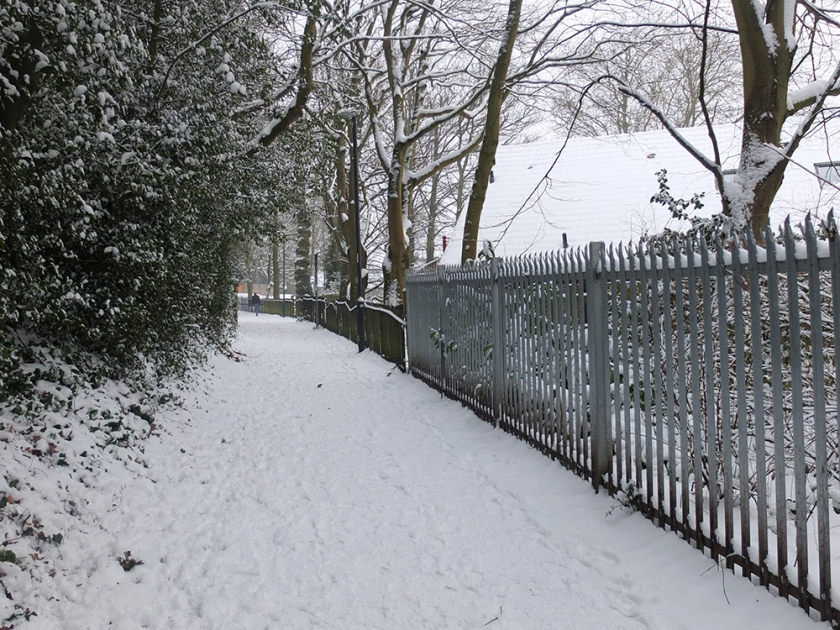 snowy path with railings