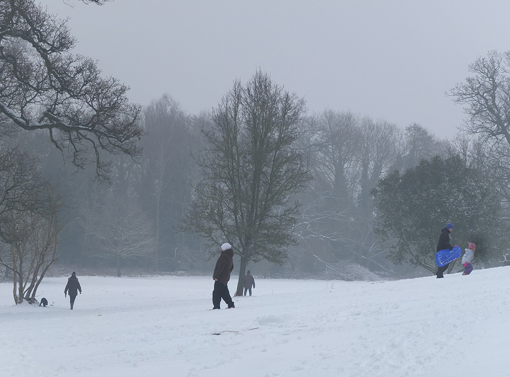 families sledging in snowy park