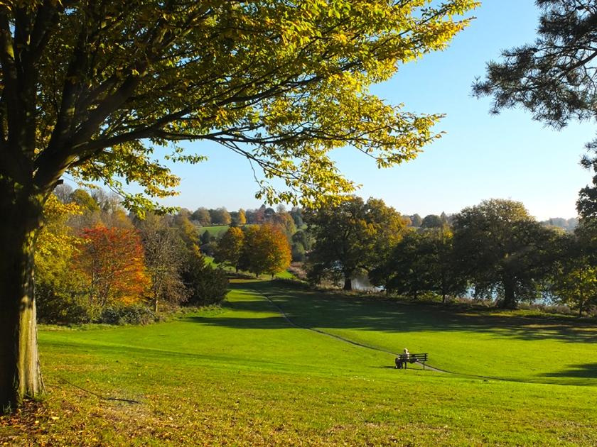 Bench on green parkland. Autumn