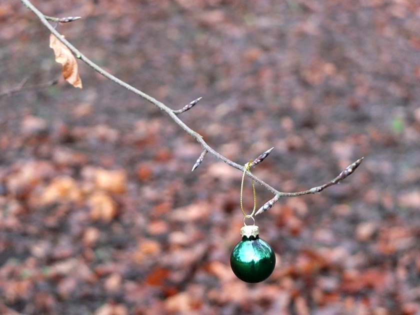 single green Christmas bauble on bare tree branch