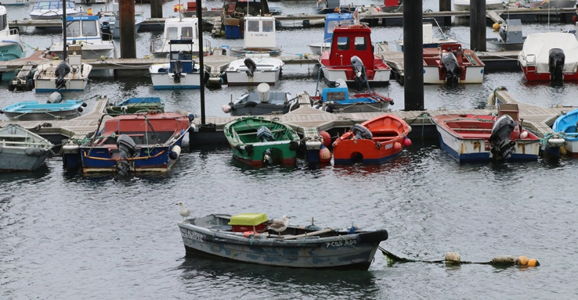 fishing boats in harbour , Galicia