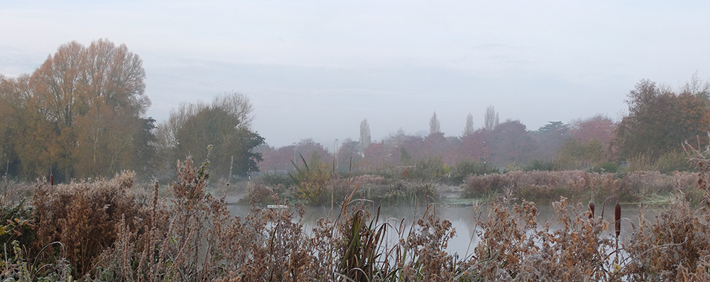 Early morning mist over pond