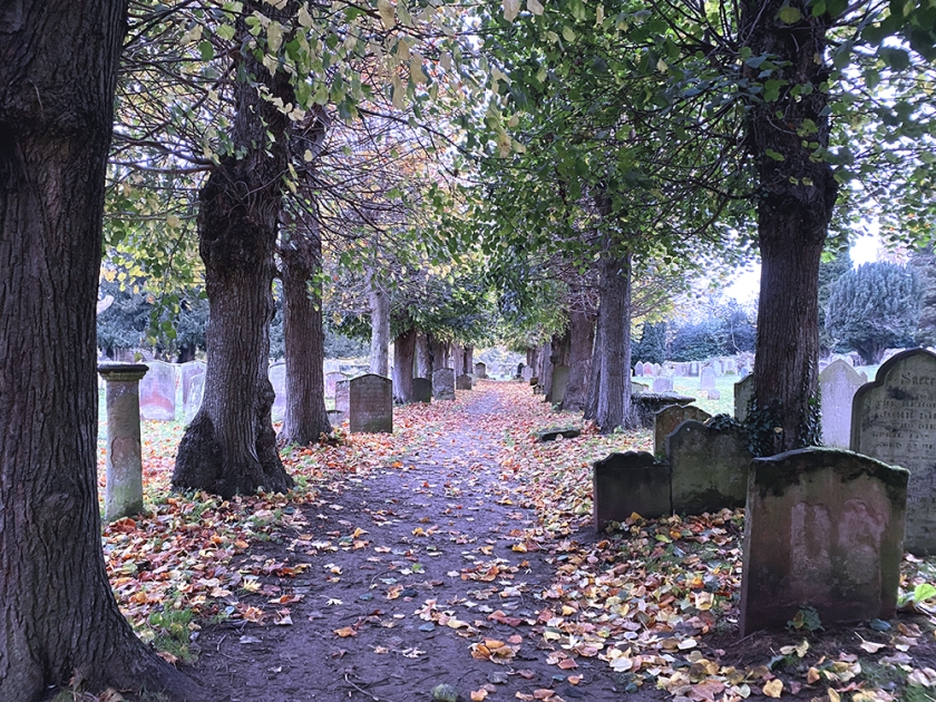 Path through autumn graveyard