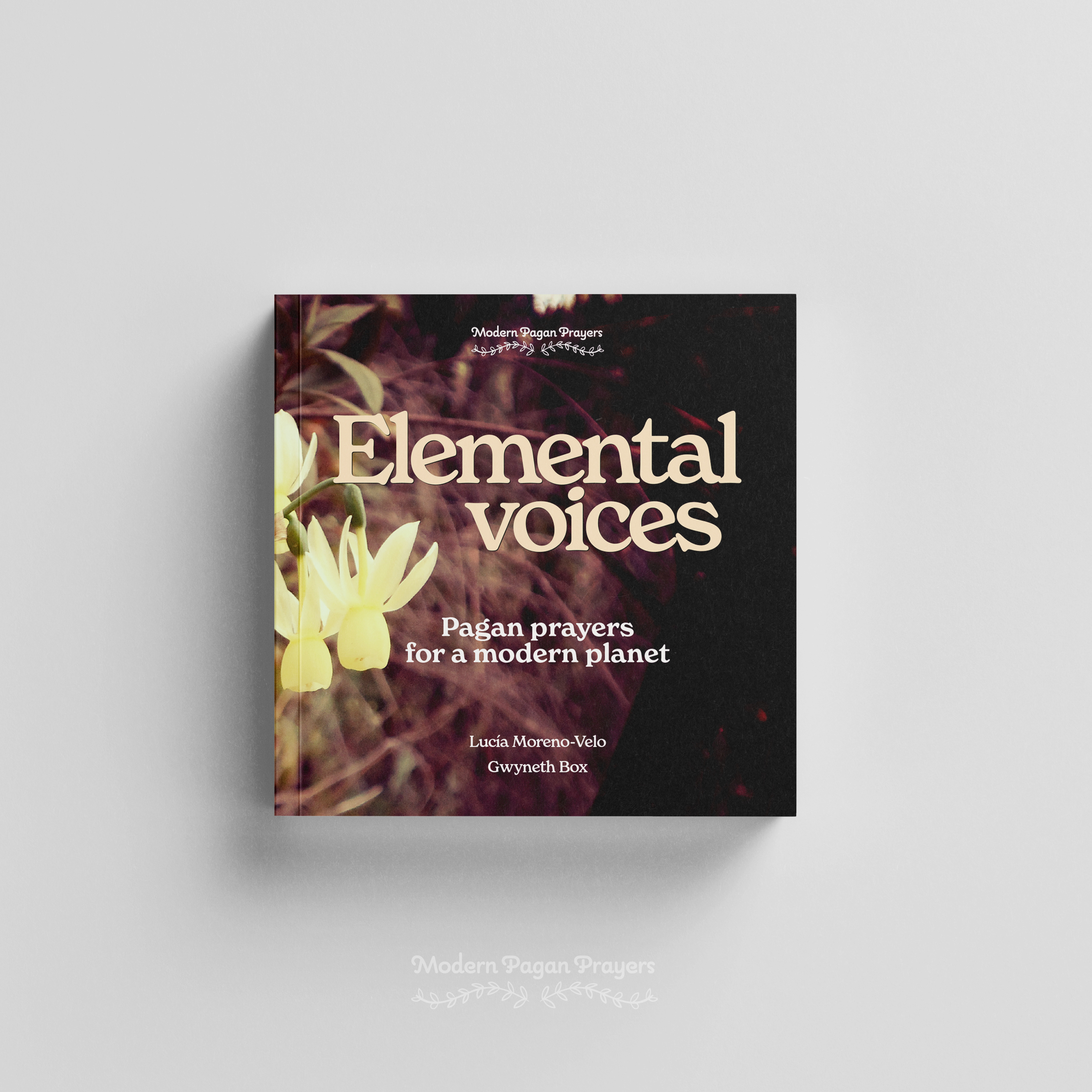 Elemental voices - book cover