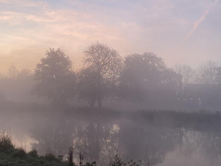 Trees on river bank. Misty autumn sunrise