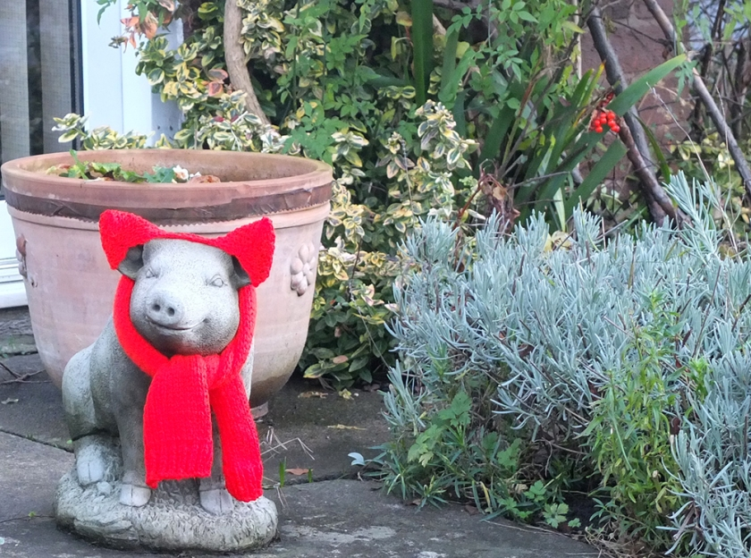 stone pig statue with scarf and ear muffs