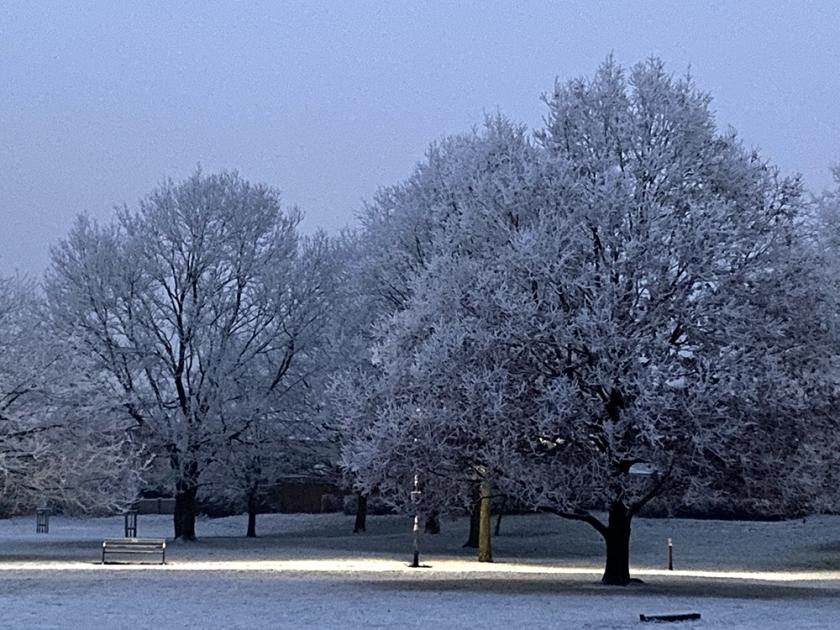 snowy tres