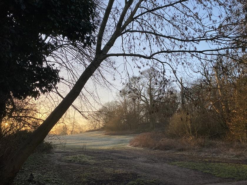Misty and frosty sunrise